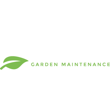 meadows-header-design-agency-graphic-design-canterbury.png