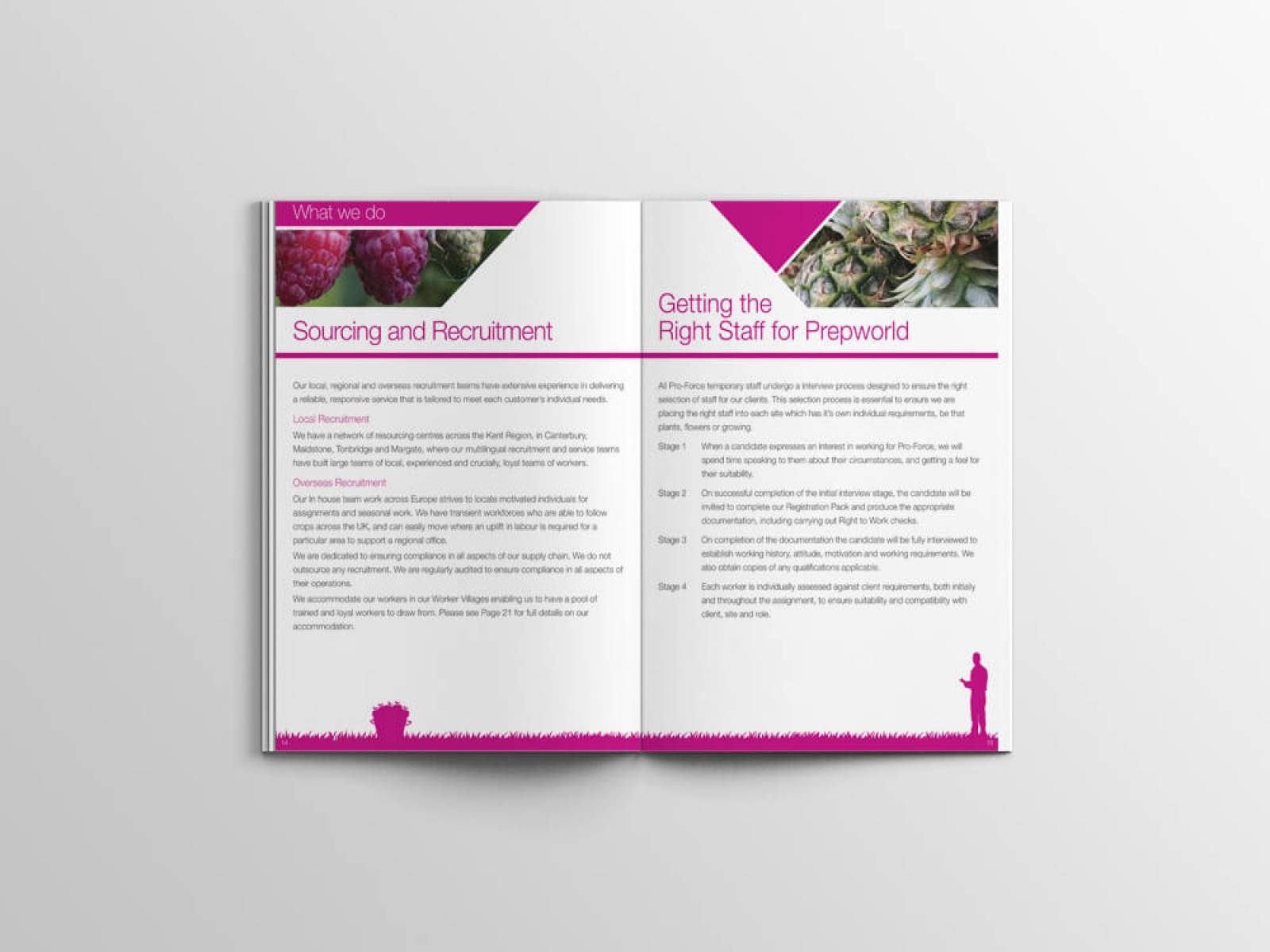 Pro-force-brochure-4-design-agency-graphic-design-canterbury.jpg