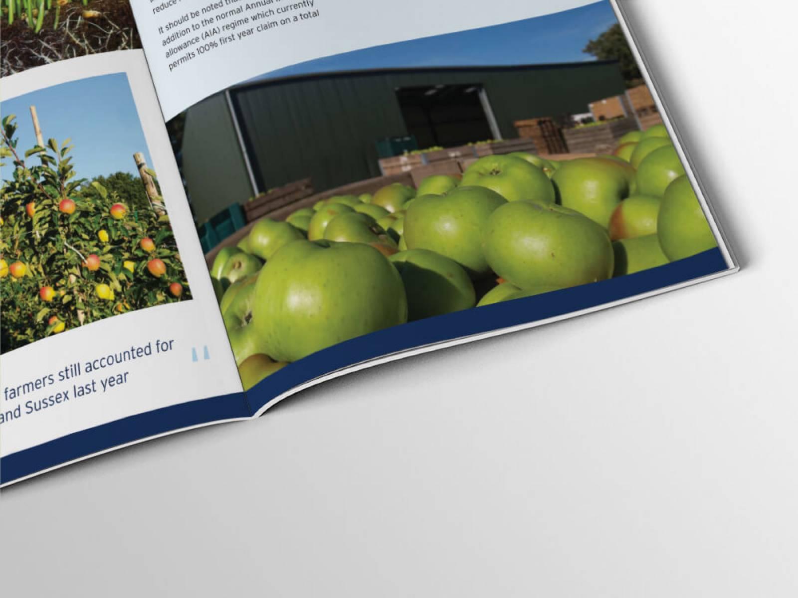 BTF-brochure-2-design-agency-graphic-design-canterbury.jpg